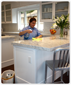 spotless cleaning services staff cleaning kitchen