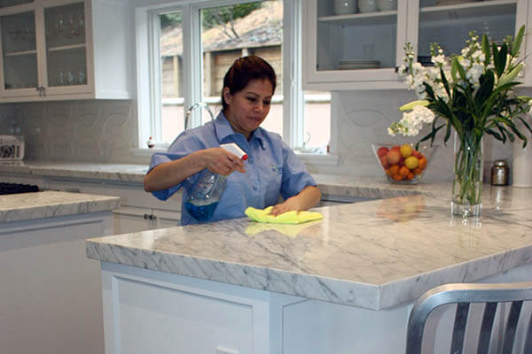 spotless cleaning services kitchen